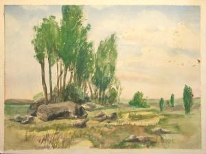 Lueneburger Heide 2