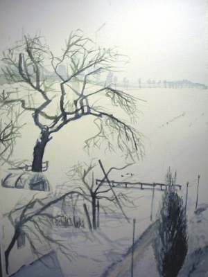 Apfelbaum Winter