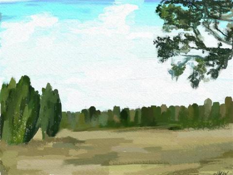 Lüneburger Heide 16