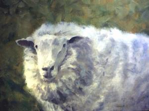 Schaf gehabt