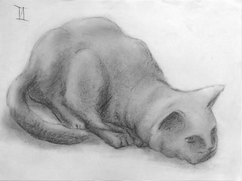 Kitty Cat II 0 sketch