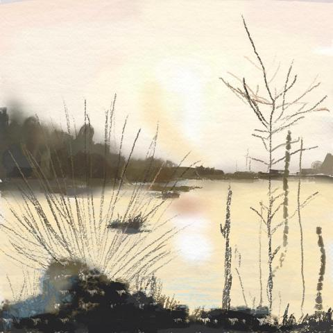 Heide-Moor 1